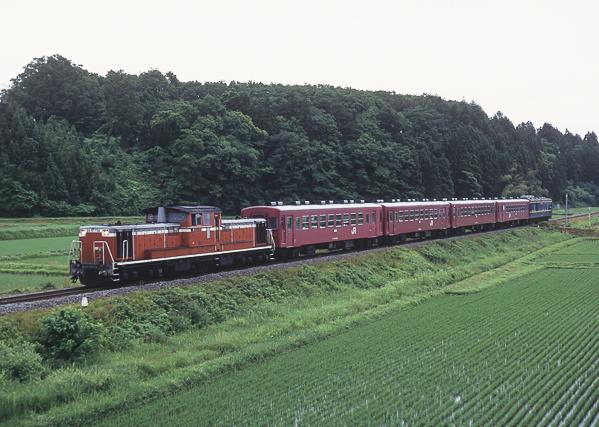 Dd5175650